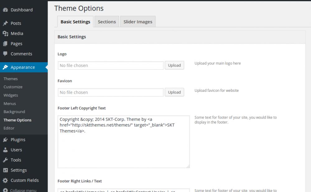 Wordpress theme options.png