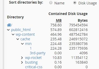 cPanel - Disk Usage.jpg