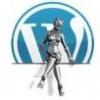 فروش سایت قالب وردپرس - آخرین ارسال توسط amator